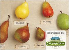 """The Korean proverb """"eating pears cleans the teeth"""" contains more than a little truth. Sweet and delicate with a fresh, clean flavor, pears are a gift from nature. And when it comes to cooking with them, let's just say they """"pear"""" perfectly with many foods!"""