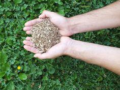 Les bûches compressées sont fabriquées à partir de matière 100% recyclée. Aucun arbre n'est abattu pour produire des bûches compressées. www.recybuche.fr