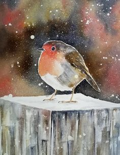 A3 original watercolor painting of a cheeky robin in winter setting. For sale. Watercolours, Watercolor Paintings, Multimedia Arts, Gouache, A3, Robin, Birds, The Originals, Winter