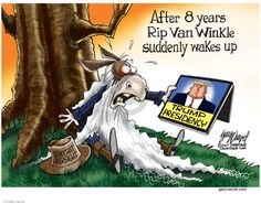 After 8 years Rip Van Winkle suddenly wakes up. Trump presidency. Democrat oversight.