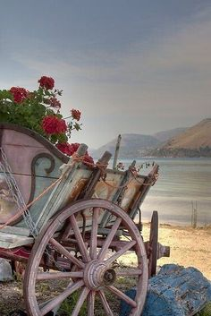 1000 images about wagons carts on pinterest wheelbarrow for Things to do with old wagon wheels