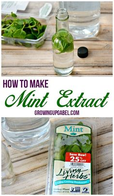 Did you know you can make homemade extracts with just a few simple ingredients for much cheaper than the store bought extracts? Learn how to make homemade mint extract with just 2 ingredients!