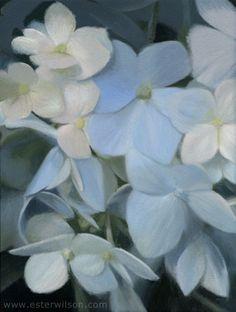 Still life oil painting of blue hydrangea flowers by Ester Wilson - http://www.esterwilson.com