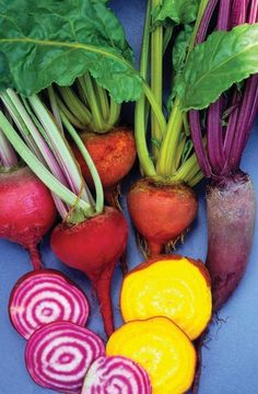 Growing beets-thrive in Fall-I want to plant golden beets this next year.