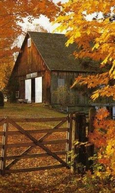 Fall leaves in brilliant colors decorate the landscape of this old barn. Country Barns, Country Life, Country Living, Country Fall, Country Roads, Country Charm, Usa Country, Country Scenes, Farm Barn