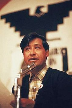 Cesar Chavez was an American farm worker and a labor leader who fought for the rights of farm workers. With the help of the Dolores Huerta co-founded the National Farm Workers Association which helped many poor families.
