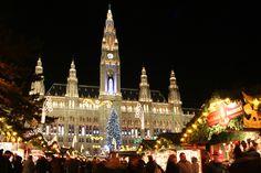 Town Hall :Piata de Craciun in Viena.