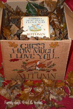 Autumn themed story box