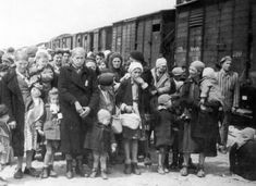 """Auschwitz, in line for """"selection"""" - from the Auschwitz Album"""