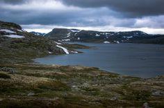 Hardangervidda - Kraekkja