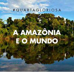 """Inspirada por Arrebalde, estudo do jornalista João Moreira Salles que investiga a Amazônia através dos séculos e sua relação com o clima, @gpiresoficial faz um convite, na #QuartaGloriosa de hoje, para olharmos a floresta com olhos mais humanos, de compaixão e também responsabilidade. Como era o clima da Amazônia há 600 anos e quais os ricos para o futuro se o desmatamento continuar a avançar como ocorre hoje? Confiram o texto completo no """"Nossa Voz"""". Woodland Forest, Study, Eyes, Good Ideas, Ticket Invitation, You Complete Me, Amazons"""