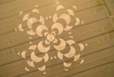 Crop circle photo by Sven Hoppe
