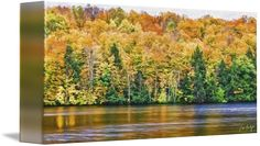 """""""Panoramic+Artistic+Autumn""""+by+Phill+Doherty,+Ridgeway,+Ontario+//+An+artistic+photo+illustration+of+Autumn+colors+along+the+Madawaska+River,+just+outside+Burnstown,+Ontario+in+the+Ottawa+Valley.+//+Imagekind.com+--+Buy+stunning+fine+art+prints,+framed+prints+and+canvas+prints+directly+from+independent+working+artists+and+photographers."""