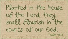 Planted in the house of the Lord, they shall flourish in the courts of our God.  Psalm 92:13