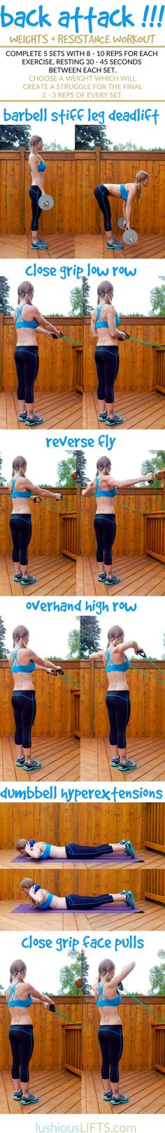 Back Attack!!! {Weights + Resistance Workout}    lushiousLIFTS.com
