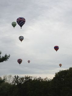 The Great Forest Park Balloon Race -  A great event for the whole family!