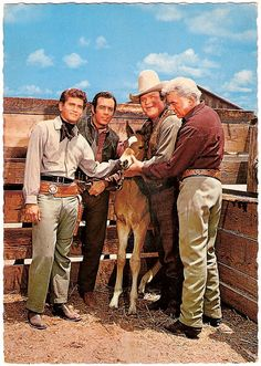 "Bonanza Michael Landon (Little Joe Cartwright), Pernell Roberts (Adam Cartwright), Dan Blocker (Erik ""Hoss"" Cartwright) and Lorne Greene (Ben Cartwright). Kino Theater, Old Western Movies, Lorne Greene, Bonanza Tv Show, Pernell Roberts, Michael Landon, Tv Westerns, The Lone Ranger, Old Shows"