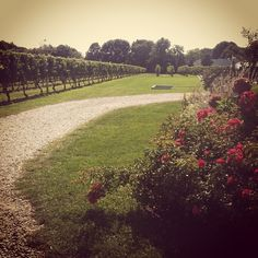 Peconic Bay Winery in Cutchogue, NY
