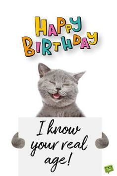 Looking for for inspiration for happy birthday wishes?Check out the post right here for unique happy birthday inspiration.May the this special day bring you love. Happy Birthday Best Friend, Funny Happy Birthday Pictures, Birthday Wishes For Daughter, Birthday Wishes Quotes, Happy Birthday Messages, Happy Birthday Humorous, Happy Birthday With Cats, Happy Birthday Wishes Flowers, Friendship Birthday Wishes