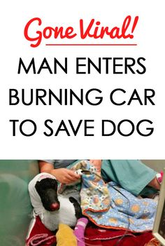 Man Enters Care To Save His Dog's Life.... this is incredible! http://iheartdogs.com/man-enters-burning-vehicle-to-save-his-dogs-life/