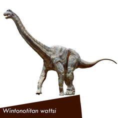 Australian Age of Dinosaurs Prehistoric Animals, Dinosaurs, Fossil, Lion Sculpture, Australia, Age, Statue, History, Historia