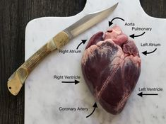 Survival Tips And Techniques For survival food recipes Cooking Pork Roast, Roast Chicken And Gravy, Pot Roast, Deer Recipes, Wild Game Recipes, Elk Heart Recipe, Deer Butchering, Meat Butcher, Character Art
