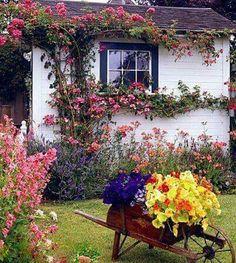Spring at Floral Cottage...