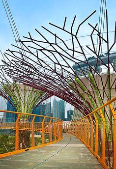 Super Tree Grove. Gardens by the Bay, Singapore.