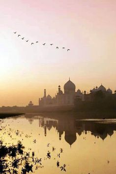 travel destinations india Awesome in which year taj mahal was built on this favorite site Taj Mahal, Places To Travel, Places To Visit, Travel Destinations, Weather In India, Nature Photography, Travel Photography, India Architecture, India Culture