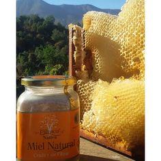 """""""Al fin volvio Miel Cruda !!!! la miel maduro en la colmena y está lista para su cosecha. Yupiii , ahora a gozar de su maravilloso sabor e incomparables propiedades.  #miel #MielCruda #raw #crudivegano #salud #vidasaludable #puro #abejas #familia #FoodLover #alergias #panal #alimentaciónConsciente #alimentolimpio #libredequimicos"""" Photo taken by @mielcruda.cl on Instagram, pinned via the InstaPin iOS App! http://www.instapinapp.com (01/07/2016)"""