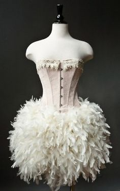 Maybe pin boas to the costume I bought to make it longer.. And change it to a burlesque or 'white swan' costume!