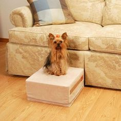 High-density foam pet step that weighs only 3 lbs. and is covered in microfilament suede fabric, in a choice of 2 neutral shades. Yorkshire Terrier, Ramp Design, Dog Stairs, Neck Injury, Support Dog, Dog Ramp, Pet Steps, Suede Fabric, Small Dogs