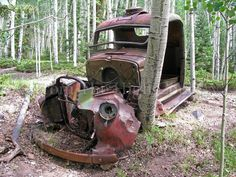An abandoned truck found deep in a forest in Colorado.