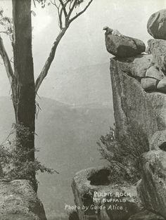 Pulpit Rock, Mt. Buffalo, Victoria, Australia, ca. 1900, Alice Manfield.  **Notice the woman at the top of the rock!