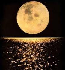 imagens da lua - Pesquisa Google