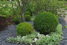 Bollar i trädgården – Trädgårdsmakarens Blogg