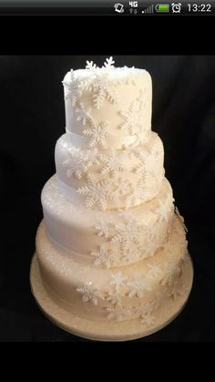 Winter weding cake!