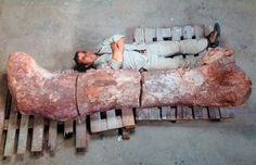 Auch größer als dieser Mann: Gleich mehrere Teammitglieder ließen sich neben dem Knochen ablichten - zum Größenvergleich.