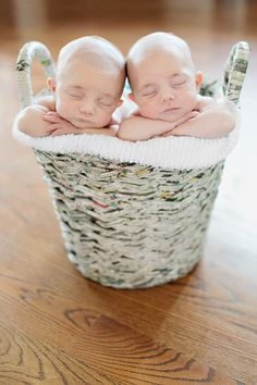 twins. in a basket.