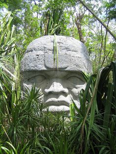 Olmec heads  date from at least before 900 BC and are a distinctive feature of the Olmec civilization of ancient Mesoamerica (Gulf Coast of Mexico).