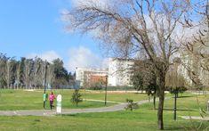 Parque do Zambujal Golf Courses, Sidewalk, Garden, Parks, Walkways, Pavement