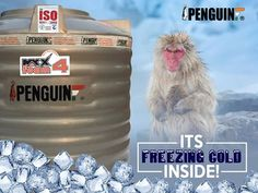 The Maxx Foam tank from Penguin has multi-layers to avoid the heat. No matter how much how it is outside, water is always freezing cold inside! #PenguinTank