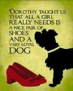 One of my favourite Wizard of Oz quotes - Dorothy taught us that all a girl really needs is a nice pair of shoes and a very loyal dog. Life Quotes Love, Great Quotes, Quotes To Live By, Inspirational Quotes, Motivational, Quirky Quotes, Happy Quotes, Dog Quotes, Funny Quotes