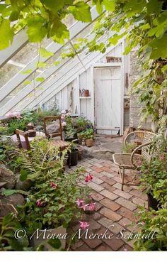 Idyllic Place greenhouse with brick flooring and climbing plants. serra con pavimento in mattoni a vista e piante rampicanti. - Greenhouse - Ideas of Greenhouse