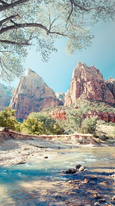 Zion National Park ~ is located in the southwestern United States near Springdale, Utah