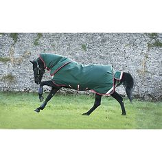 Horseware Rambo Duo Limited Edition Blanket 81 Horseware http://www.amazon.com/dp/B014GGY25M/ref=cm_sw_r_pi_dp_Gbh8vb0BDD5TP