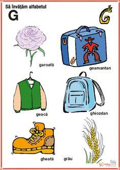 Homeschool, Comics, Learning, Kids, Baby, Crafts, Montessori, Roses, Full Bed Loft