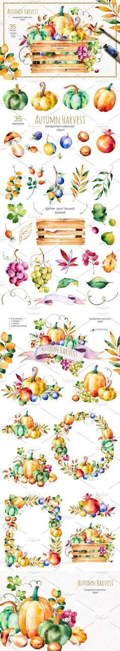 Autumn Harvest. Wedding Card Templates