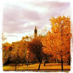Whether you're heading to a Military Fitness Class or just out for a run, Kelvingrove Park in Glasgow is one of the prettiest to do it in.