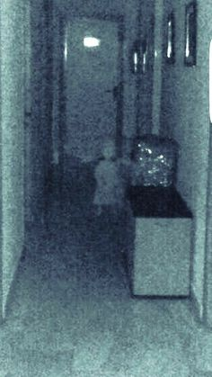 City Hall of Vegas del Genil, located in the center of Purchil - A council member took this photo of what appears to be a child after experiencing paranormal phenomenon. Creepy Ghost, Creepy Art, Scary, Creepy Stuff, Ghost Photos, Real Ghost Pictures, Creepy Stories, Ghost Stories, Paranormal Pictures